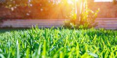 Оценка газонной решётки для экопарковки